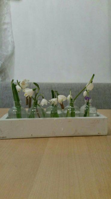 Frühling ist Wachstum
